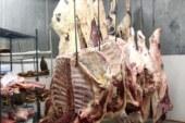 נוהל בתי קירור- מחסנים המשמשים לאחסון מוצרי מזון מן החי במעבר